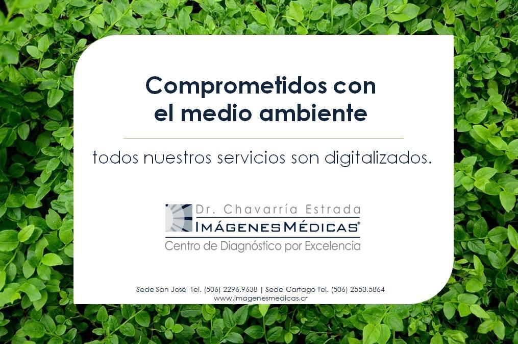 servicios-digitalizados